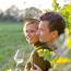 Eingeschenkt & aufgetischt! Heurige, Weingasthöfe & Zimmer 2014